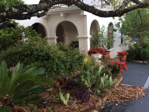 Yard of the Month – April 2016
